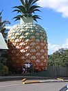 The Giant Pineapple