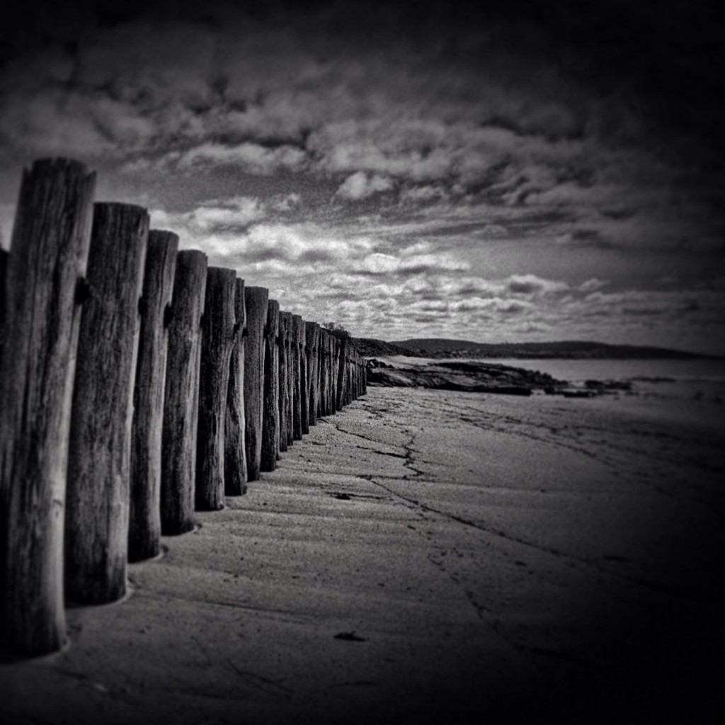 Fletch's beach fence posts