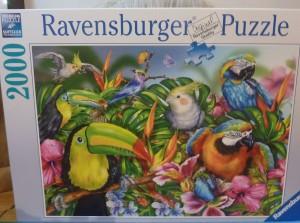 2000 piece jigsaw puzzle