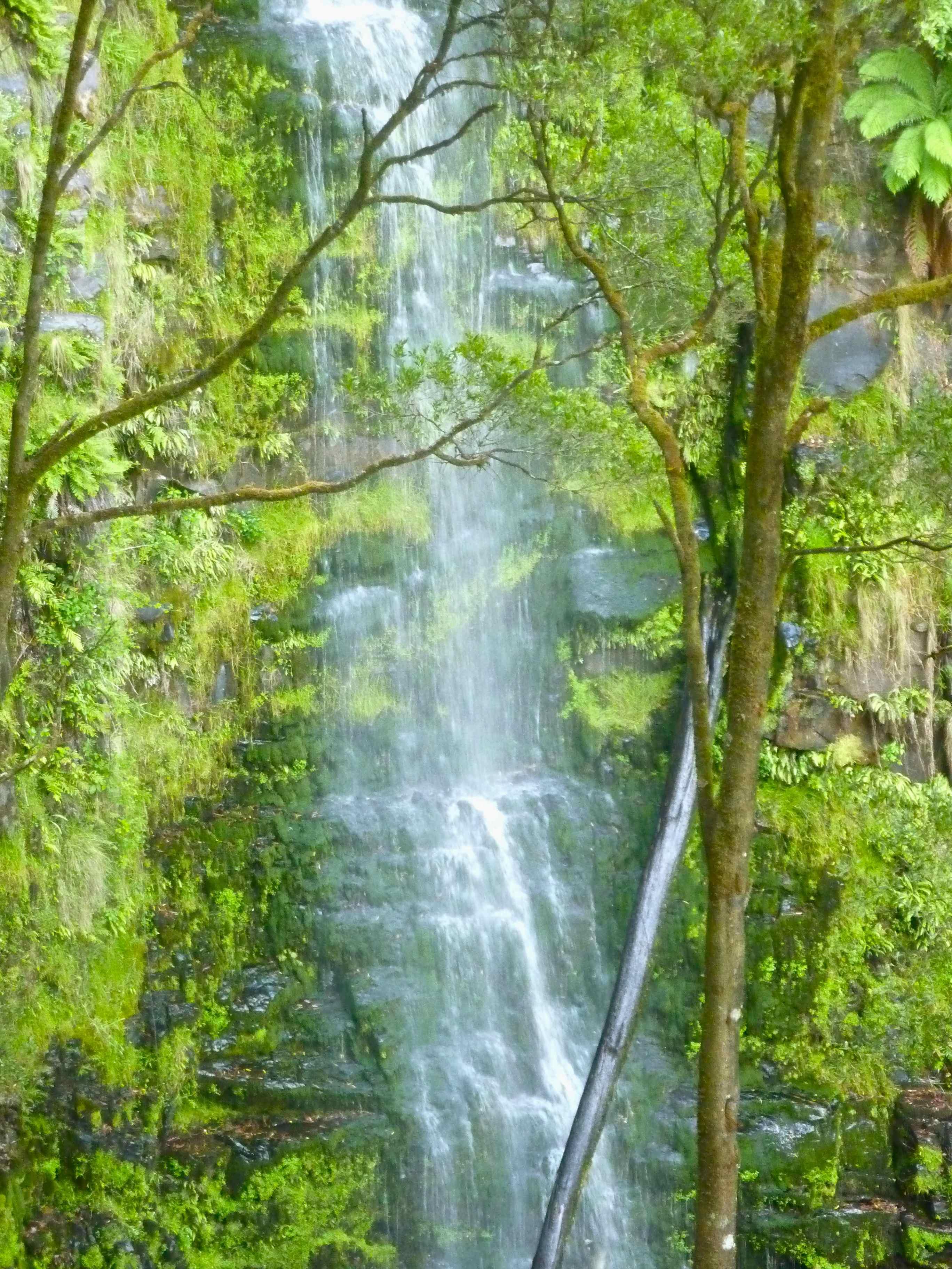 Erskine Falls (1)
