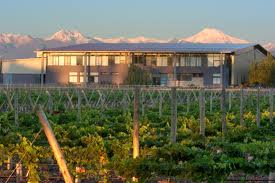 Tapiz winery, Argentina
