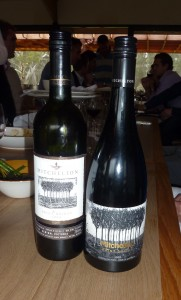 Mitchelton's signature wines - it's award-winning Shiraz 2009 and 1999