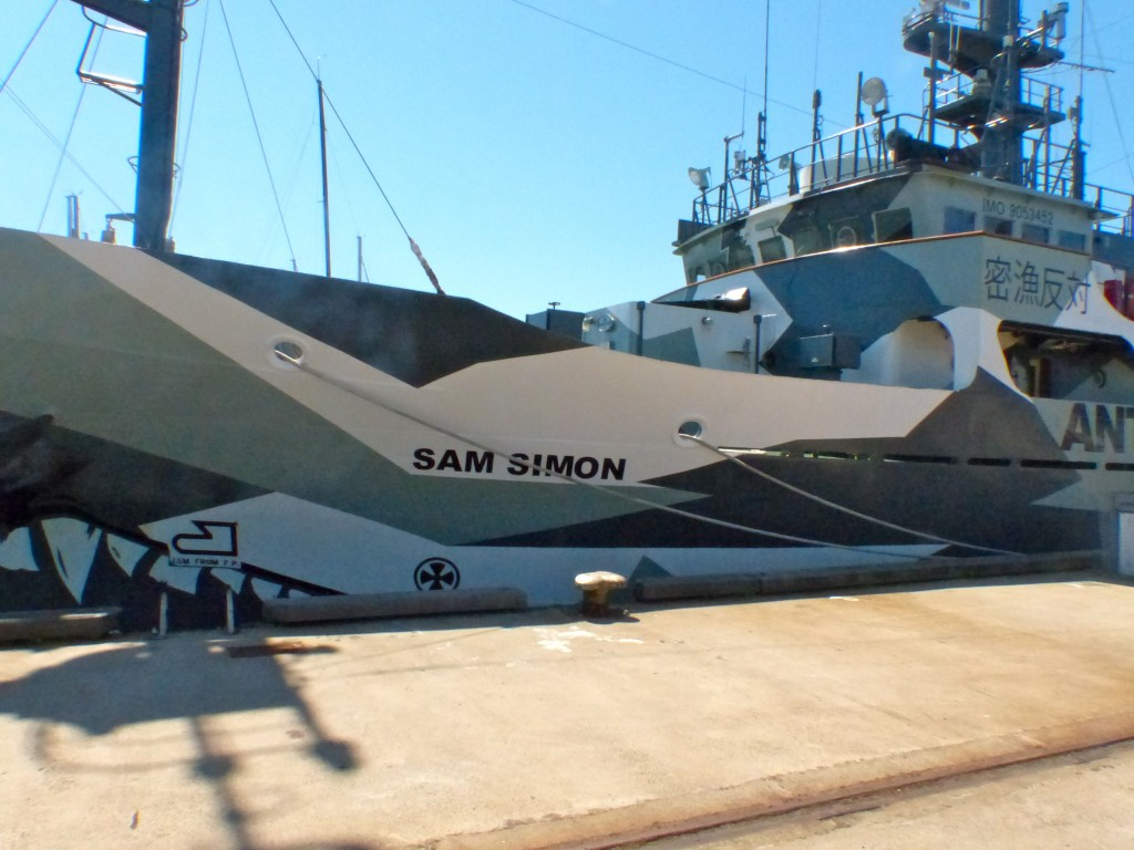 The San Simon