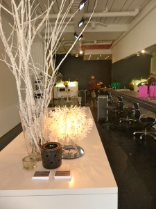 Interior Salon Golightly