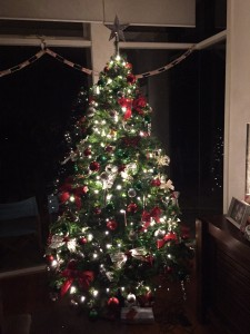 Our Christmas tree - mostly decorated by Ronnie!